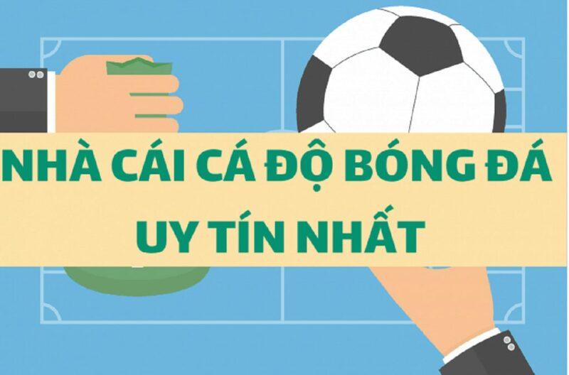 Top 5 nhà cái cá cược bóng đá uy tín hàng đầu Việt Nam